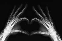 bones / by Angel Phillips