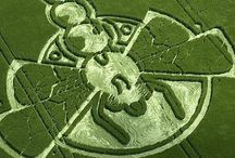Fave Crop Circles / by SouthernGirl