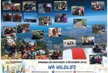 CM16056 WA Wildlife