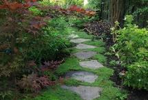 Gardens / by Jennie Rudolph