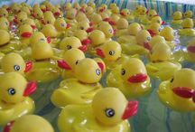 Just Ducky / I just LOVE rubber duckies!! Idk why... I just do! I love to collect them!! I have way more than I need lol  / by Beth Vincent