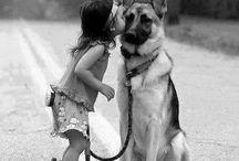 Animals / Para los que aman el mundo de los animales y la buena fotografía.