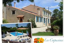 Holiday rentals in Charente Maritime