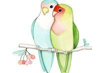 Çini kuş