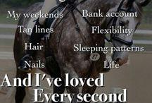 Det å være hestegal ..og konsekvenser
