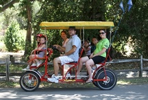 Bike and Paddle Boat Rentals