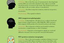 Psykologian opinnot / Psychology studies