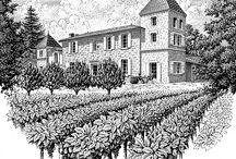 winnice rys