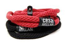Ceaser Millan