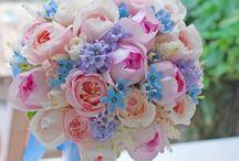 たかさご花
