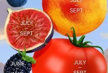 When to Pick A Guide to Summer Fruits and Berries #infographic