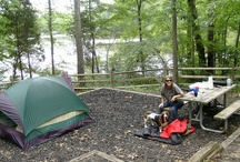 Camping&Cabins / Pictures featuring camping and cabins / by Virginia State Parks