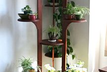 Wood Plant Projects