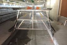 broiler cage / 1.Material: low carbon steel wire Q 235 2.Surface: Electric galvanized, hot dip galvanized, plastic coated 3.Wire diameter: 3.0mm-3.3mm 4.  Available size: