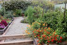 Rob Callahan / Front and Backyard Ideas / by I Garden