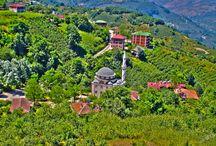Aybastı Kayabaşı Köyü