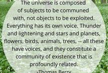 Nature and the Universe