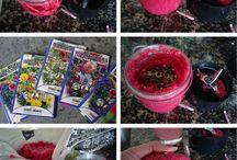Zero Waste Valentines Day / Ideas for Valentines day that are zero waste and kind to the planet. Upcycles, home made cards, home made truffles.