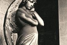 Angels / by Jo Angel