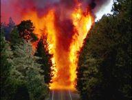 Natural Disasters / Natural disastors