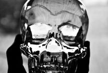 Skulls / by Stephan Smith