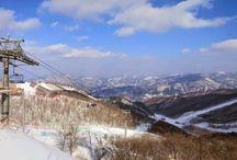 Hàn Quốc điểm du lịch trượt tuyết thú vị
