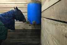 High hay feeder