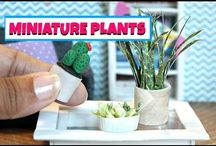 Mini Plants Inspiration / Beautiful miniature plants