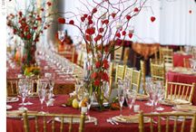 Table Settings / by Linda Driscoll-Hughes