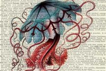 jellyfish/vandmand