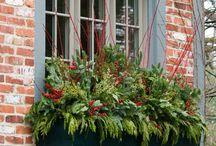 I door window gardening winter / Winter garden ideas