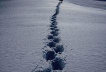 Snowboarding!!!