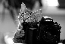Buenas fotos / Fotos que puedes ver y usar para perfiles y demas