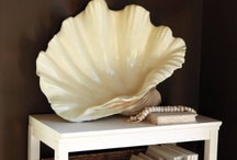 She Sells Seashells / Sea Shell love!