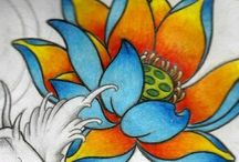 fiori loto