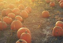 Autumn feeling