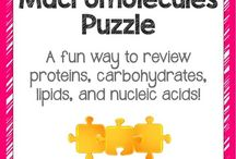 Teaching carbohydrates