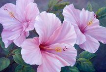 çiçek resimler