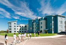 Our Work: Student Housing / This board contains completed student housing architecture projects of Marks, Thomas Architects.