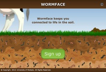 Lesson idea: Earthworm adaptations / Learning outcome: earthworms have adaptations to suit their soil habitat.