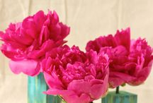 Floral Arrangements / by BRI CRUM