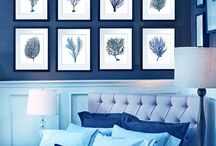 Wall and frames