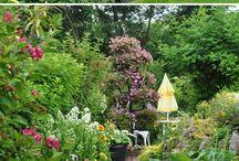 okrasna zahrada