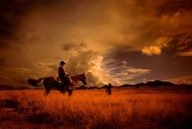 I Love Cowboys! / by Lori (Sitler) Hoyt