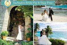 DW : Barbados / by Wander Love Weddings and Travel