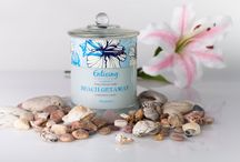The Ring Collection / All of Enticing Candles gorgeous fragrances in one place!