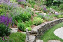zahrada ve svahu / zahrada ve svahu