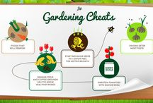 Gardening / Find all your gardening needs at bit.ly/JMLGarden