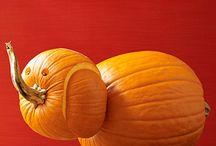 Pumpkin Challege