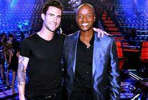 American Idol and The Voice / the Season Winners